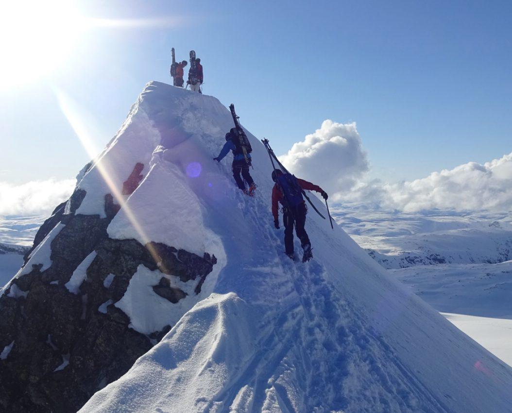 Alpin Skibestigning